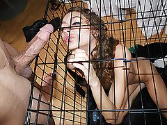Excellent Chicks Get Pounded